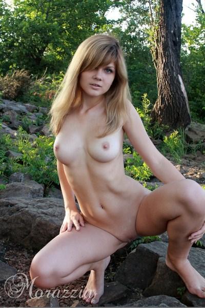 wilgotna cipka w lesie